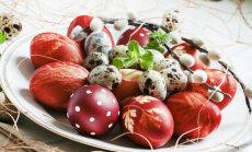 Käes on kevadpühad: värvi mune, too tuppa kevadlilli ja järgi vanarahva traditsioone