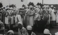 Eestirootslaste tegevus Kaitseliidus 1920ndatel ja 1930ndatel: Noored Kotkad, Kodutüred ja Naiskodukaitse