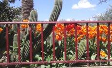 Jalgsi läbi Hispaania ehk minu teine palverännak | 2. postitus