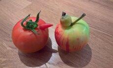 PÄEVAPILT: Poegadega tomat ja õun