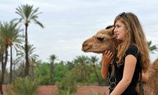 Marrakechi linnapuhkuse reisijuht