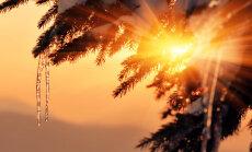 On taliharjapäev: kui täna on päikest näha, siis on mehed aasta jooksul terved ja tublid