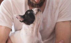 TOP 10 | Viisid, kuidas koerad meiega suhelda püüavad