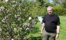 VIDEO: Eksootilised magnooliad kasvavad ka külmas Eestis