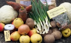 СРАВНЕНИЕ ЦЕН: Экологические продукты в разы дороже обычных