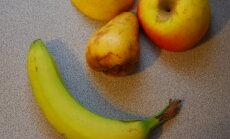 Kikud säravaks: hammaste valgendamine banaanikoorega annab uskumatuid tulemusi