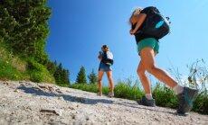 Самые популярные виды отдыха в Эстонии – культурные мероприятия и активный отдых