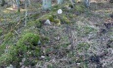 Tänini säilinud kiviaiad metsas on pärandkultuuri osa ning nende säilitamise ja eksponeerimise eest makstakse metsaomanikule ka toetust.