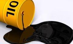 """<a target=""""_blank"""" href=""""http://lhv.delfi.ee/news/4949261?locale=et"""">Energiasektori laenud kütavad kirgi</a>"""