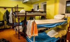 Kodutut varjupaik akadeemia teel