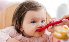 Mida ja miks pakkuda beebile tema teisel elupoolaastal? Nõu annab lastearst Reet Raukas