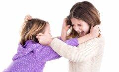 Mida teha, kui lapsed alailma omavahel tülitsevad