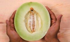 VIDEO: Kelmikas õppematerjal meestele: puuviljade abil seksitarkused korralikult selgeks!