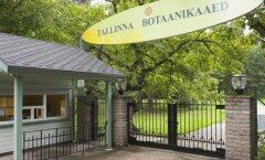 Таллиннский ботанический сад отмечает 55-летие
