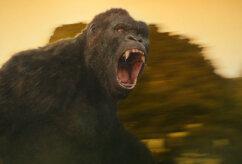 """NÄDALA TREILER: Filmiajaloo suurim King Kong seiklusfilmis """"Kong: Pealuu saar"""""""