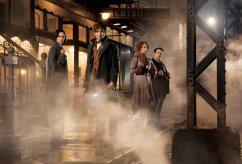 """TREILER: Tutvu uue Harry Potteri filmi """"Fantastilised elukad ja kust neid leida"""" maagiliste olenditega"""