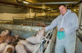 Urmas Laht: Meie pole Taani seakasvatajatest kehvemad
