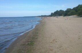 На пляж в Силламяэ вынесло кусочки желтой жирной субстанции