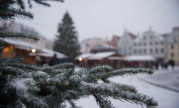 Esimene lumi Tallinnas 21.11.2014