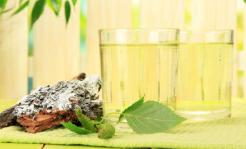 Tervis loodusest: kase- ja vahtramahl aitavad õrnalt keha puhastada ja kevadele äratada
