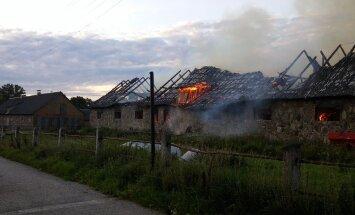 Tori hobusekasvanduse juhataja: tulekahju sai arvatavasti alguse süütamisest