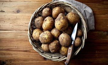 NUTIKAS LAHENDUS: Kuidas köögis sibulaid ja kartuleid hoida