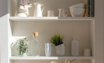 Täna on kaduneljapäev: korista kodu, istuta taimi ja vabane liigsest kolast!