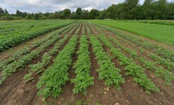 Maaviljelusinstituudis