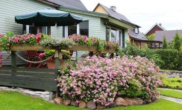 Rapla aed, Diane, Kauni kodu konkurss 2016