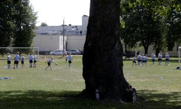Reuters Orissaare väljakust: 15-meetrine tammepuu keset jalgpalliväljakut, mida Ronaldinho teeks?