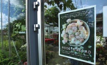 VIDEO: Millised on kaunimad uued roosisordid?