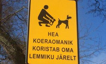 FOTO: Pirital püütakse koeraomanike tähelepanu kollaste märkidega