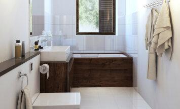 KODU KOLLASES MAJAS: Harutame lahti vannitoa — dilemmad ja otsused