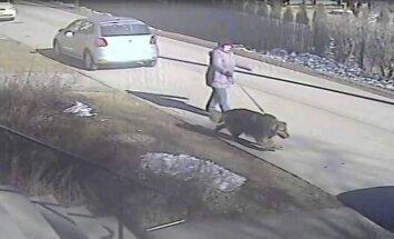 FOTO: Kurvad lemmikloomasõbrad otsivad taga naist, kes väidetavalt lasi Kristiines oma koeral eramaja aias kassi surnuks pureda