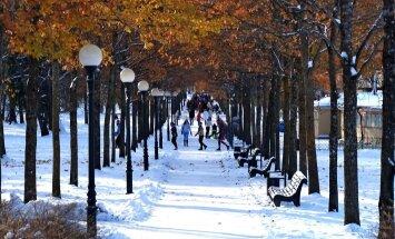 ФОТО читателя Delfi: Солнечный снег в Кадриорге