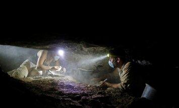 Rulliotsingud koopas läinud aastal