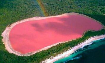 ФОТО: Розовые воды озера Хиллер