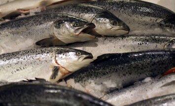 Kaval kombinatsioon kalaturul