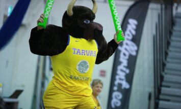 Korvpall Rakvere Tarvas vs. Avis Rapla