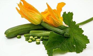 Milliseid köögivilju võiks mais külvata?