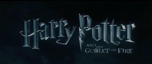 """Põnev TEST   Millisesse """"Harry Potteri"""" perekonda kuuluksid sina? Disaini maja ja saad teada"""