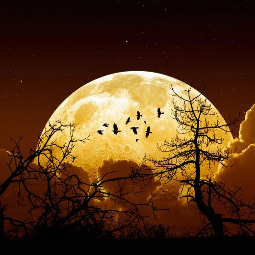 Maagiline aeg: täiskuu, kuuvarjutus ja komeedi ilmumine aitavad liikuda uuele tasandile