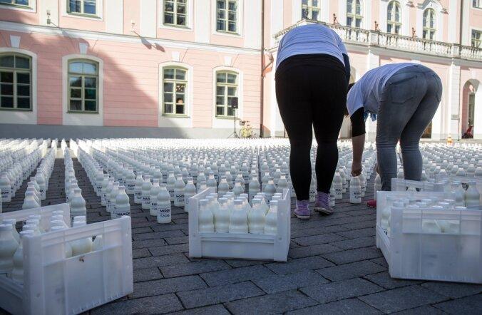 Saaremaa piimatööstus tõstab taas kokkuostuhinda