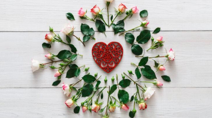 """Alkeemia lugemisnurk. Osho: """"Soov omada paneb armastuselille närtsima veel enne kui see jõuab õide puhkeda"""""""