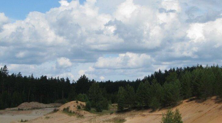 Paikuse volikogu ei toeta uut kaevandust Seljametsas