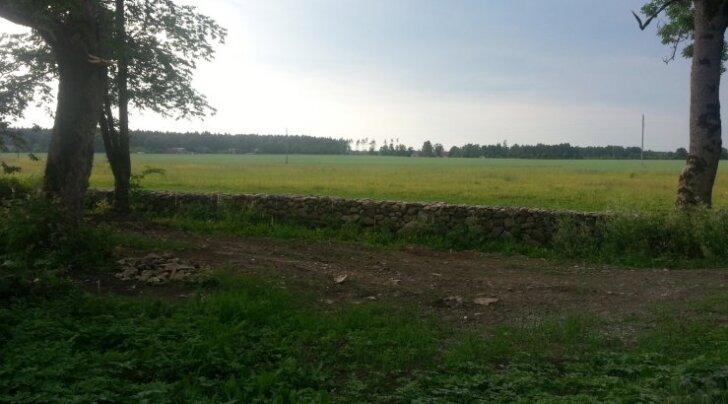 Kas Eesti kõige kõrgem mördita laotud maakiviaed?