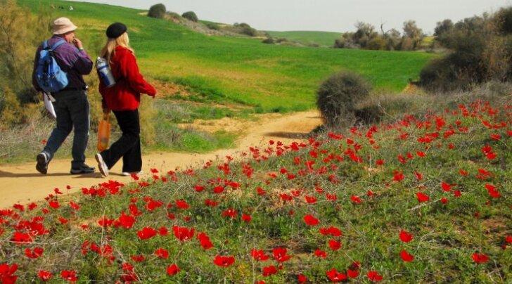 Куда ехать за счастьем? Самые счастливые и самые несчастные страны мира
