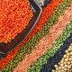 Makrobiootiline toitumine pole mitte moehaigus, vaid idamaiste printsiipide järgimine
