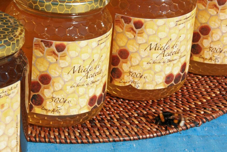 Toscanas maaliline ja mitmekesine maastik pakub mesilastele palju võimalusi taimenektari kogumiseks