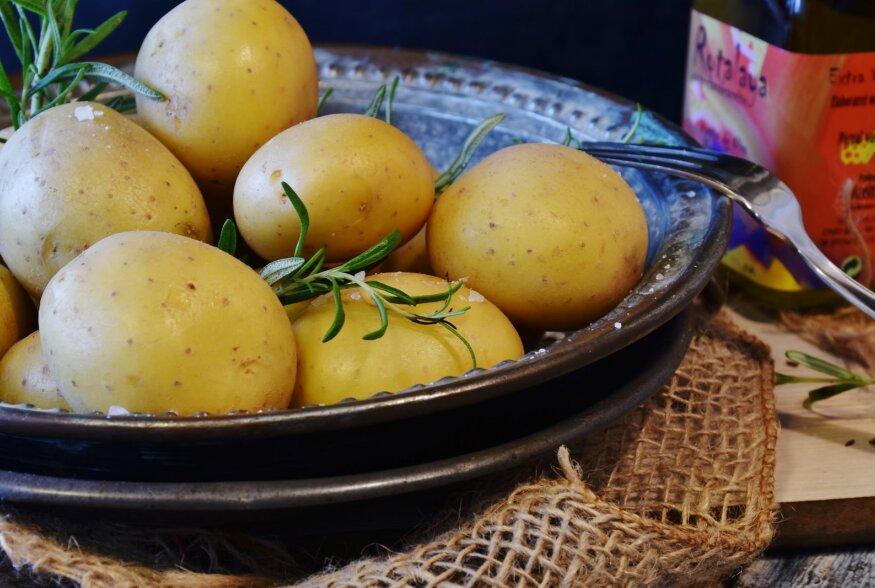 IDEED OTSAS? Kümme lahedat kartulinippi